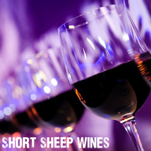 SHORT SHEEP Wines